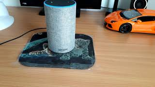 Introducing The Amazon Echo Demo!  A Must For Every Visually Impaired Household.