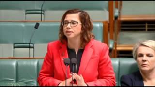 Parliament - 29 May 2017 - Education Amendment Bill 2017