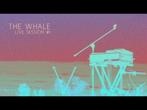 BELLEVUE / THE WHALE / LIVE SESSION #1