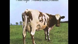 Pink Floyd - Sunny Side Up (Alan