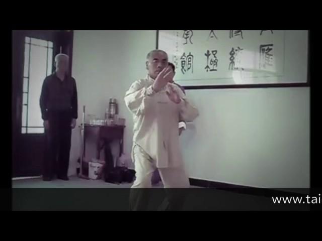 Tai Chi style Chen Laojia - Wang Chang Jiang  (2016) [陈氏太极拳老架 Taijiquan style Chen]