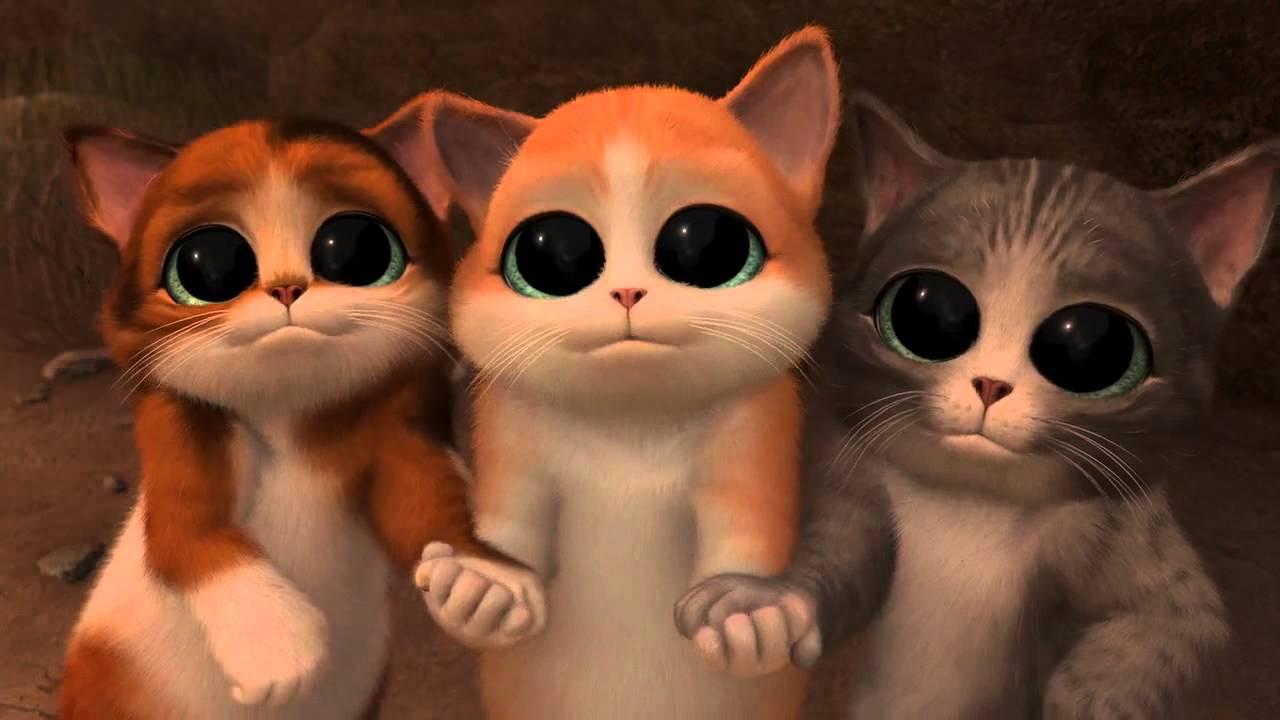 Whatsapp Cute Wallpaper Images момент из мультика Кот в сапогах Youtube