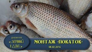 Зимняя рыбалка в Астрахани на Волге. Как ловить воблу видео.