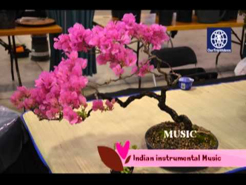 Maryland Home And Garden Show(Craft Show), Timonium, MD, US   Part 1