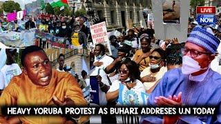 YORUBA NATION BUT OUT AS BUHARI STAND TO ADRESS UN LIVE AGAINT ODUDUWA - NINAS YORUBA BUHARI