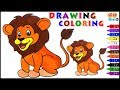 Lion Coloring Page For Kids  Color Learning