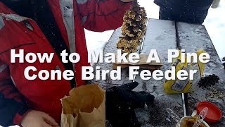 Fun Crafts With Kids, How To Make A Pine Cone Bird Feeder