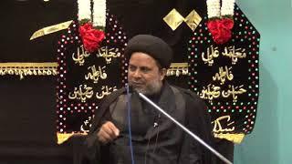 1439 - 9 Muhurram - 29 Sept 2017 - Maulana Zulfiqar Mahdi - MeM
