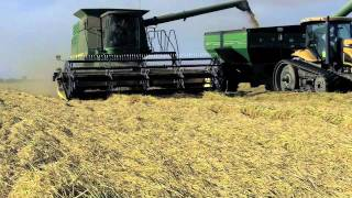 Colusa County Rice Harvest