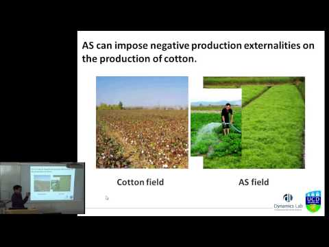 The Duffusion of a High-Value Crop in Rural Central China