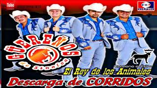 Guereños De Sinaloa .- DISCO CMPLETO [Descarga De Corridos] +Link