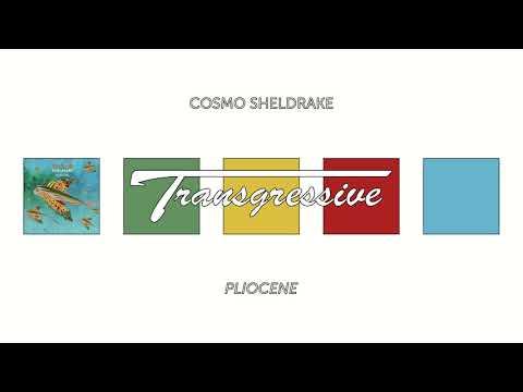 Cosmo Sheldrake - Pliocene