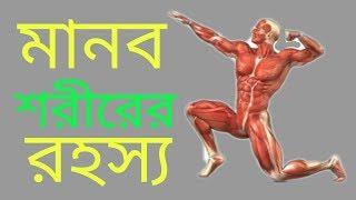না দেখলে মিস । মানব শরীরের অজনা রহস্য  । Unknown Facts About Human Body in Bengali