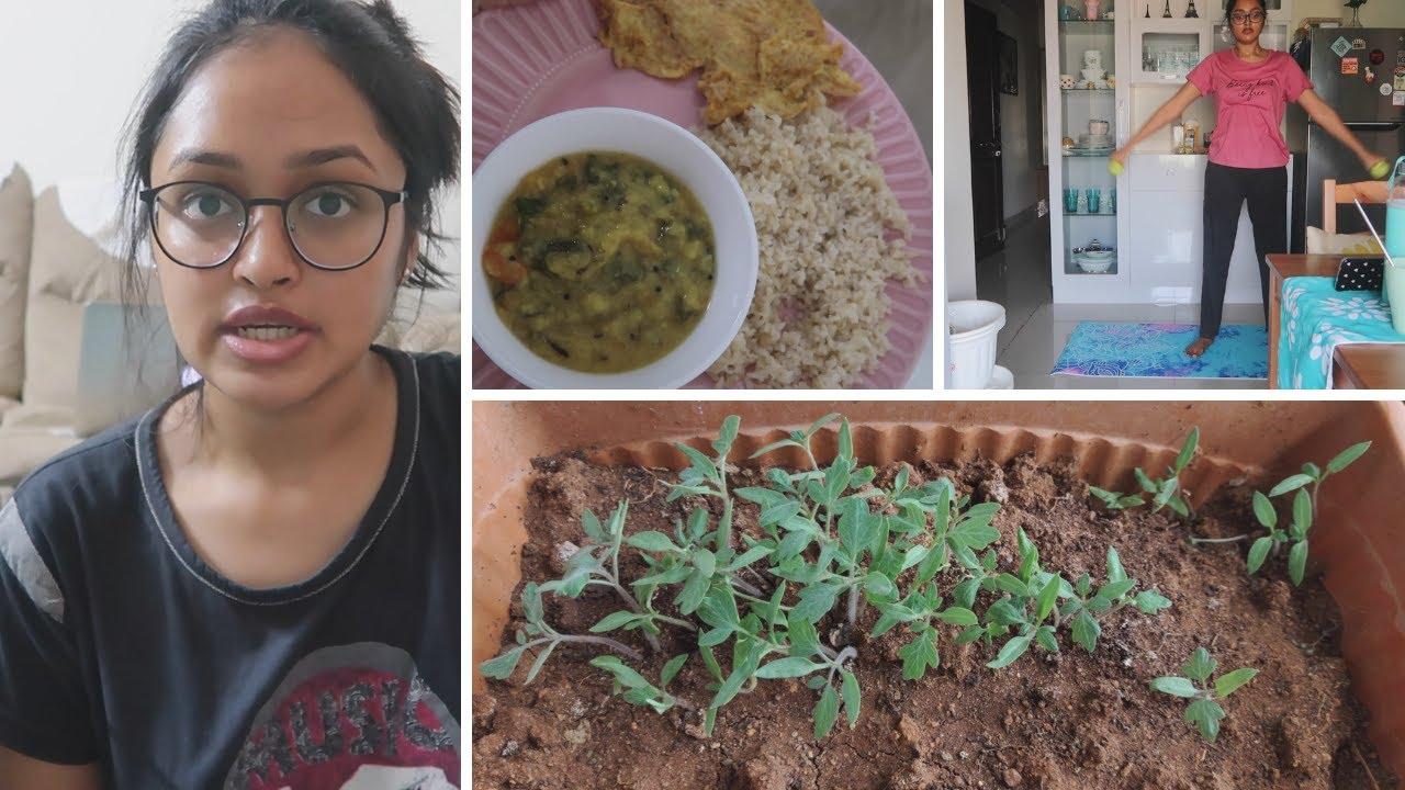 DIML మా Vegetable Garden    ఇద్దరం Start  చేసాం    8 week challenge    నా New Spects ఎలా ఉన్నాయి