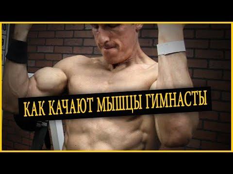 Как качают мышцы гимнасты