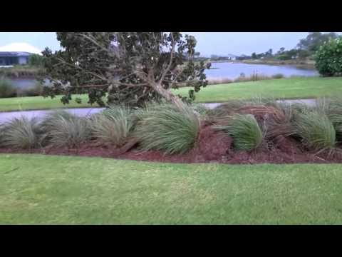 SWFL Tornado Damage Report from Naples, Florida | www.SWFL.one | SouthWest Florida