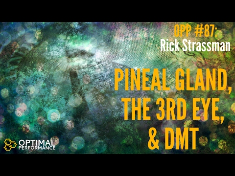 Rick Strassman: Pineal Gland, DMT and Consciousness