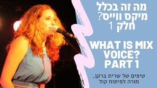 מה זה בכלל מיקס ווייס? חלק 1 What is Mix Voice? Part