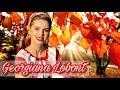 Download Georgiana Lobont-Dragu'i-i socrii de mine || NOU