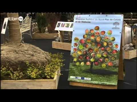 d co jardin 2016 ciney expo jardins et loisirs youtube. Black Bedroom Furniture Sets. Home Design Ideas