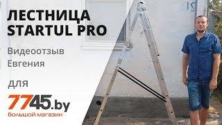 Лестница трехсекционная алюминиевая STARTUL Pro Видеоотзыв (обзор) Евгения