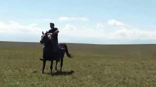 Мчится конь подо мной исп. Леонид Очиргоряев