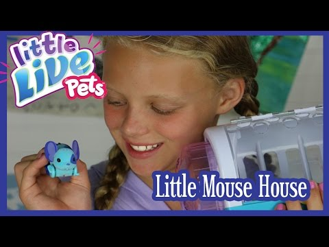 Little Live Pets Mouse House UNBOXING And Review