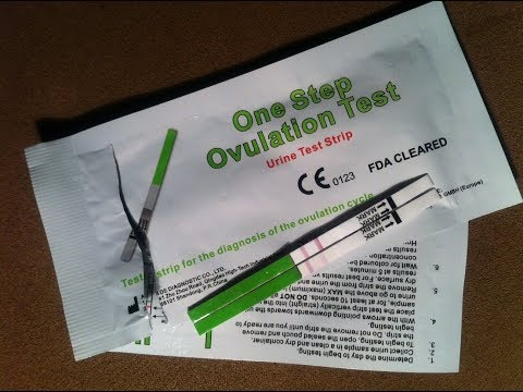 Ovulationstest One Step Für Den Neuen Zyklus