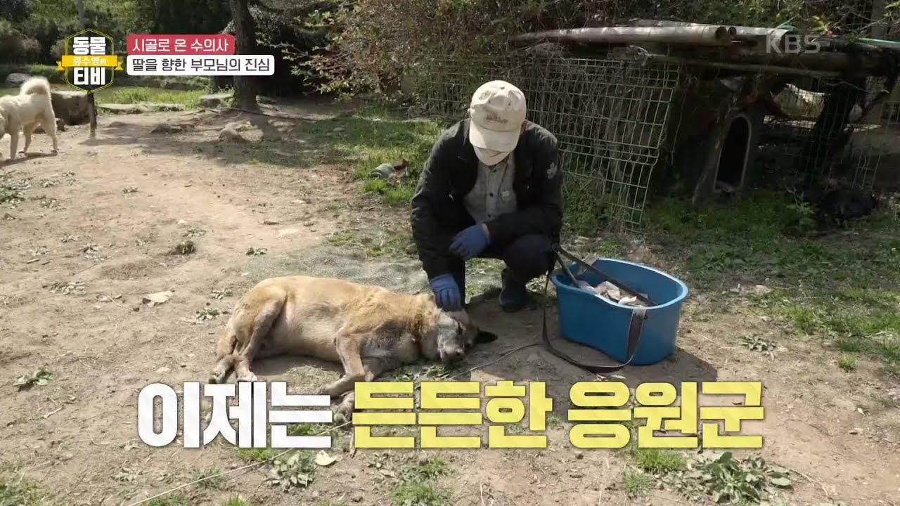 서영 씨의 든든한 지원군 부모님! [류수영의 동물티비] | KBS 210508 방송