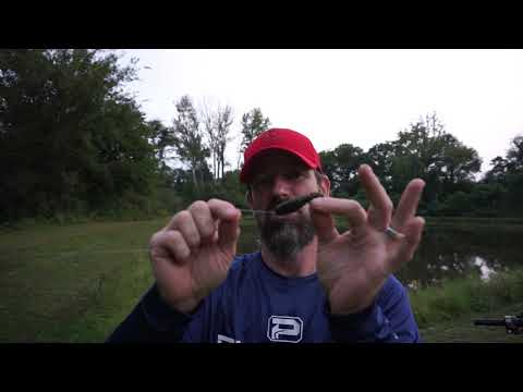 BEST LURE For Bank Fishing