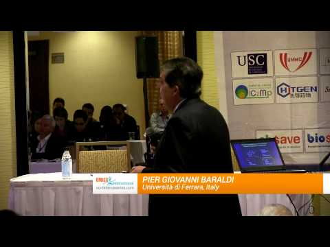 Pier Giovanni Baraldi   Università di Ferrara   Italy   MedChem & CADD 2014   OMICS International