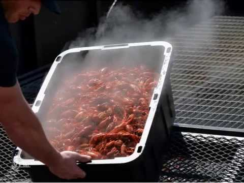 Our Lady of Holy Cross College Crawfish Boil 2015