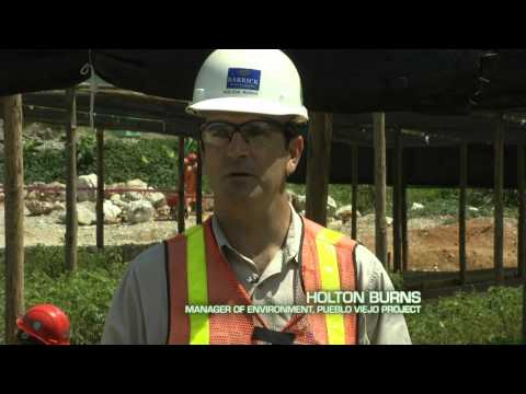 Barrick Gold's Environmental Rehabilitation At The Pueblo Viejo Mine