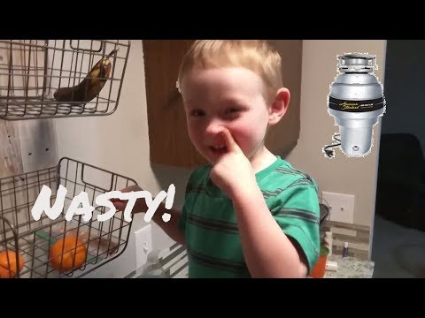 Gross Find! Costco Garbage Disposal Install - Honey Do #1