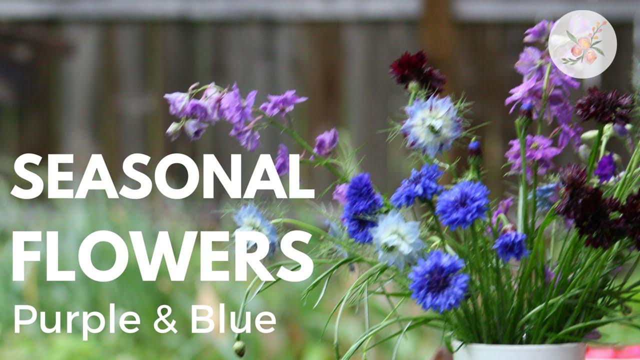 Seasonal Cut Flowers Purple Blue Flower Arrangement Ornamental