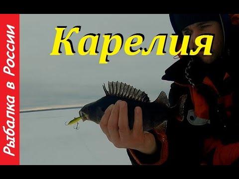 Ловля окуня на балансир. Рыбалка в Карелии 2020. Часть 2