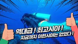 Gun beach Scuba / 괌스쿠버다이빙 거북이 발견 /