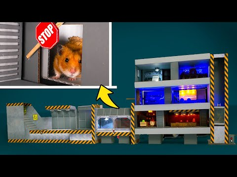 How To Make A Safe Hamster Shelter From Cardboard