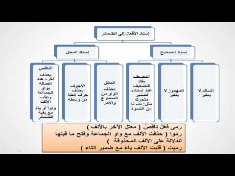 إسناد الأفعال إلى الضمائر - لغة عربية - للصف الأول الإعدادي - موقع نفهم - موقع نفهم