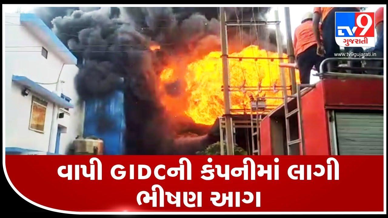 Major fire in Shakti Bio Science company in Vapi GIDC, no loss of life reported | Tv9GujaratiNews