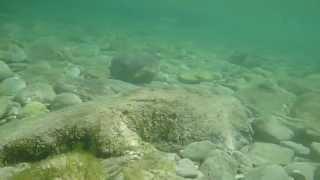 Majorca Snorkelling June 2013