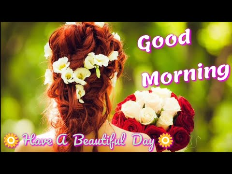 Best Good Morning Video!! Quotes!! Greetings!! Wishes!! Lovely Music!! (No Copyright Song)