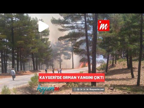 Kayseri'de Orman Yangını Çıktı