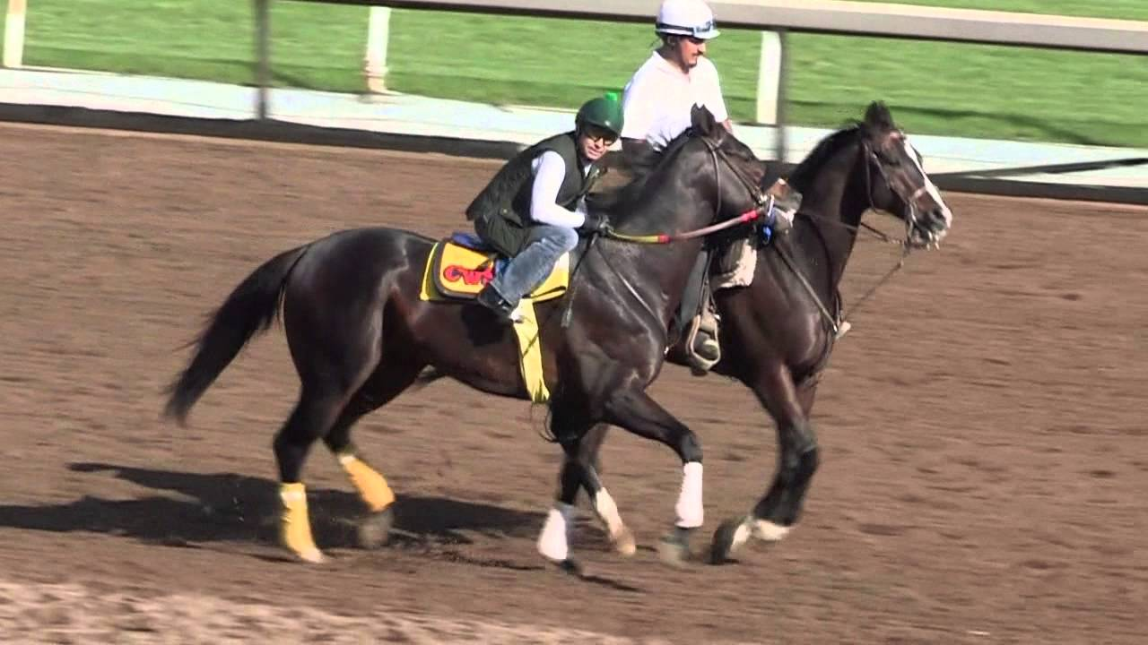 Danzing Candy Mor Spirit Meet Again In Santa Anita Derby