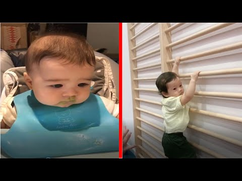 Try Not To Laugh Babies: TROUBLE MAKER and FAIL | TOP BABY FUNNY Soo Cute! #3