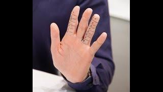 Ein Mythos: Das Zeige-/Ringfinger-Verhältnis - Vince und Dr. Nö