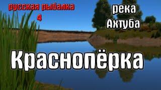 Русская рыбалка 4 рр4 rf4 река Ахтуба Краснопёрка