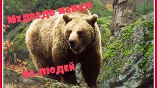 Страшное видео Медведь напал на людей
