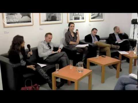 Future of the EU: Perspectives from the Visegrad Group