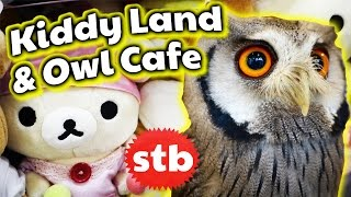 Kiddy Land and Owl Cafe Tour in Harajuku, Tokyo